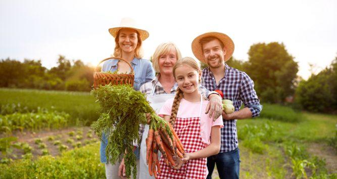 Familienunternehmen sind besser. Bauersfamilie auf dem Feld.